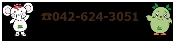 042-624-3051
