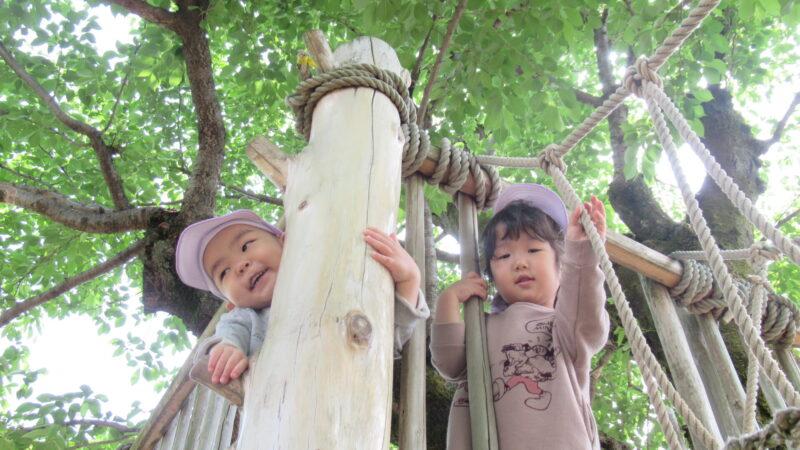 2歳児(心組・善組) 園庭で遊びました★